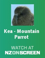 Kea - Mountain Parrot badge