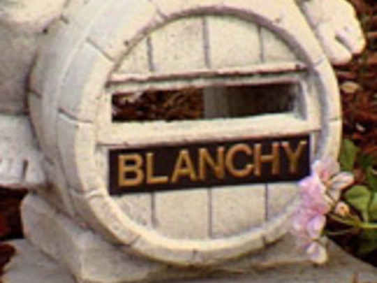 Letter to blanchy key title.jpg.540x405.compressed
