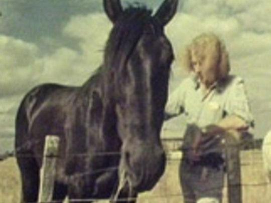 Charlie-horse-key-image.jpg.540x405