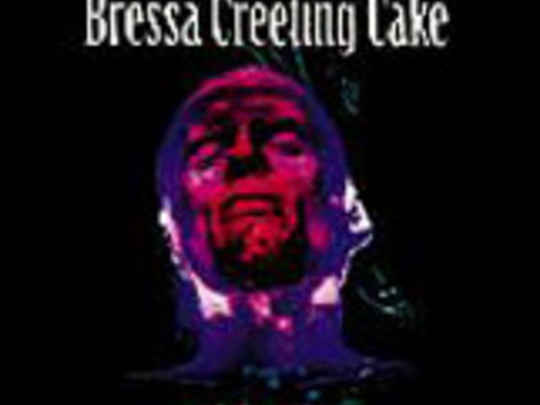 Bressa creeting cake key profile.jpg.540x405.compressed