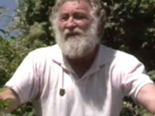 Old man s beard must go key image.jpg.540x405.compressed