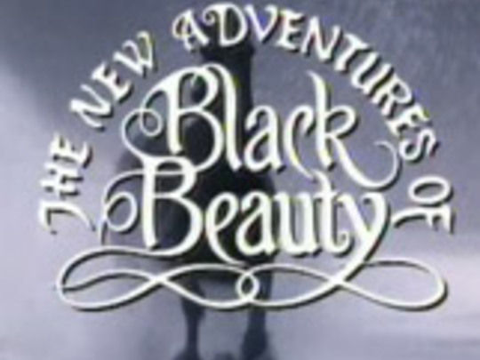 The-new-adventures-of-black-beauty-series-key-image.jpg.540x405