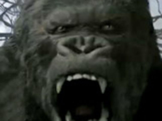 King kong key image.jpg.540x405