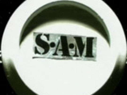 Sam series key image.jpg.540x405