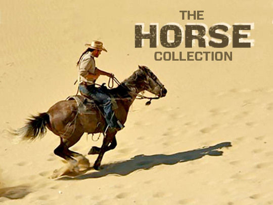 Image for The Horse Collection