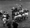 Lions vs All Blacks (second test, 1966)