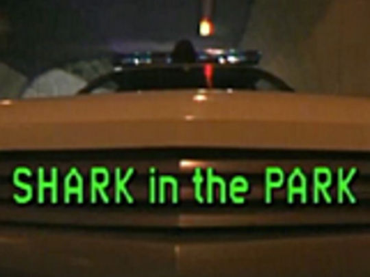 Shark in the park key image.jpg.540x405