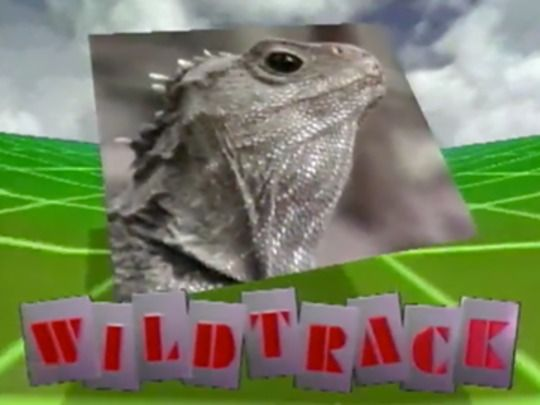 Thumbnail image for Wildtrack