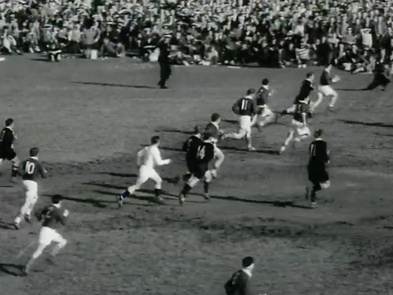 Hero image for France vs New Zealand (first test, 1961)