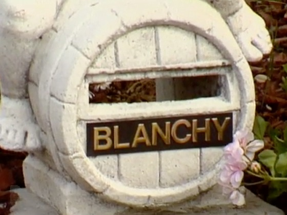 Hero image for Letter to Blanchy - A Serious Undertaking