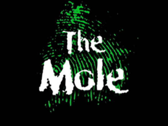 The mole series thumb.jpg.540x405
