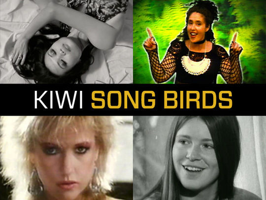 Collection image for Kiwi Songbirds