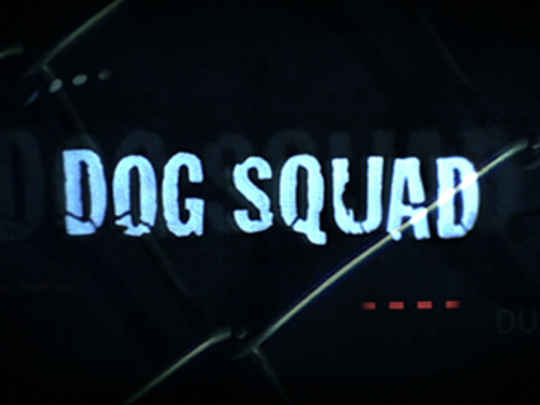 Dog squad series thumb.jpg.540x405.compressed