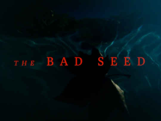 Thumbnail image for The Bad Seed