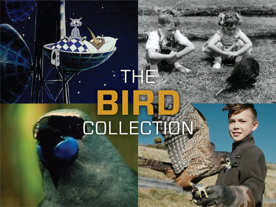 Image for The Bird Collection